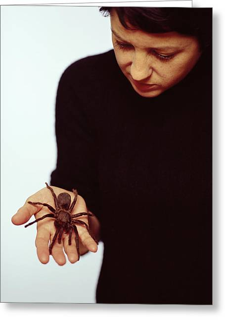 Pet Therapy Greeting Cards - Pet Tarantula Greeting Card by Lawrence Lawry