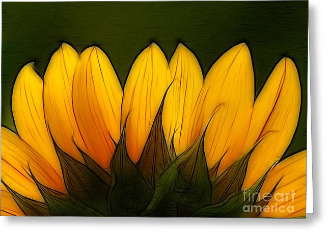 Petales de Soleil - a12 Greeting Card by Variance Collections