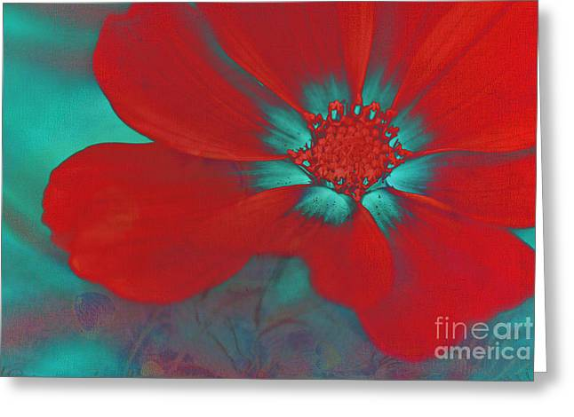 Red Photographs Greeting Cards - Petaline - t23b2 Greeting Card by Variance Collections