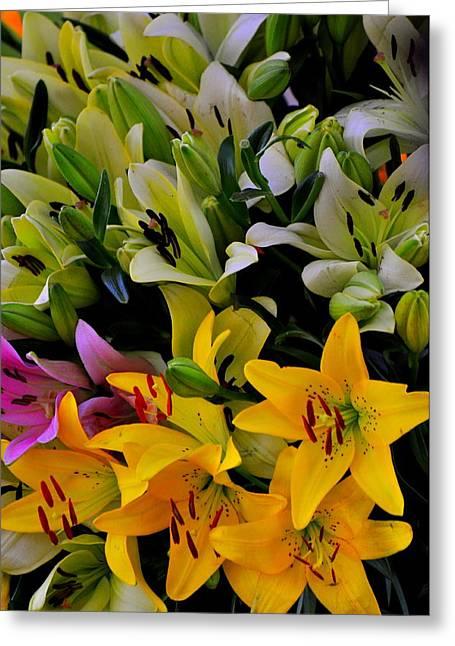 Petals Everywhere Greeting Card by Mrutyunjaya Dash