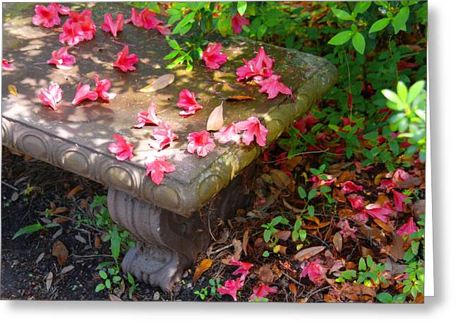 Stone Bench Greeting Cards - Petals on a bench Greeting Card by Susanne Van Hulst