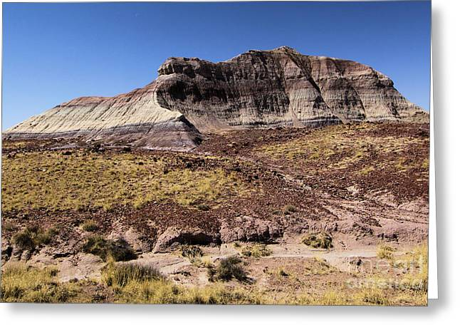 Petrified Forest National Park Greeting Cards - Petrified Forest Badlands Greeting Card by Adam Jewell