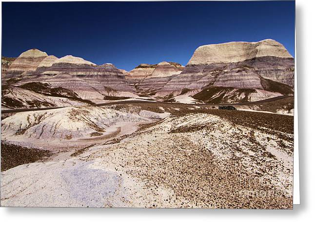 Petrified Forest National Park Greeting Cards - Petrified Forest Blue Mesa Greeting Card by Adam Jewell