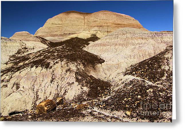 Petrified Forest National Park Greeting Cards - Petrified Hills Greeting Card by Adam Jewell