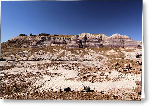 Petrified Forest National Park Greeting Cards - Petrified Painted Desert Greeting Card by Adam Jewell