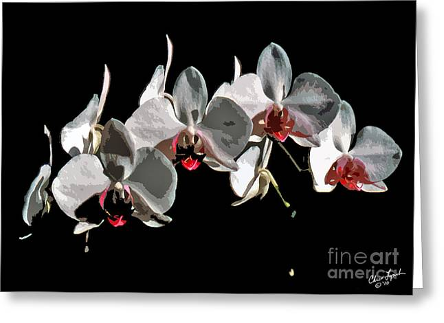 Phalenopsis Greeting Cards - Phalenopsis Watercolor Greeting Card by Chris Lynch