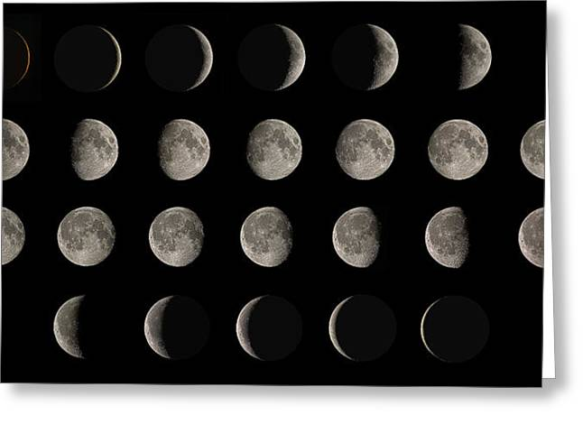 Astronomy Greeting Cards - Phases Of The Moon Greeting Card by Eckhard Slawik