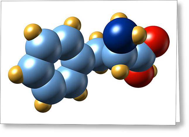 Essential Greeting Cards - Phenylalanine, Molecular Model Greeting Card by Dr Mark J. Winter