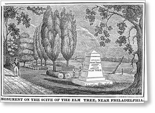 Penn Treaty Tree Greeting Cards - Philadelphia: Elm Monument Greeting Card by Granger
