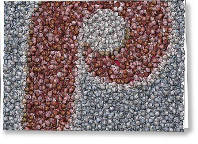 Philidelphia Phillies Baseballs Mosaic Greeting Card by Paul Van Scott