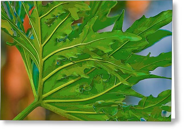 Philodendron Greeting Card by Herb Paynter