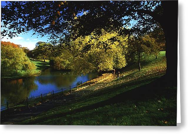 Reflections Of Trees In River Greeting Cards - Phoenix Park, Dublin, Co Dublin, Ireland Greeting Card by The Irish Image Collection