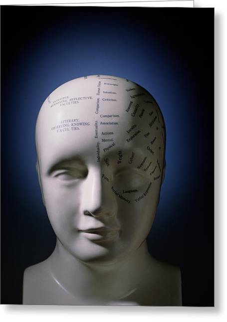 Historical Images Greeting Cards - Phrenology Bust By L.n. Fowler Greeting Card by David Parker