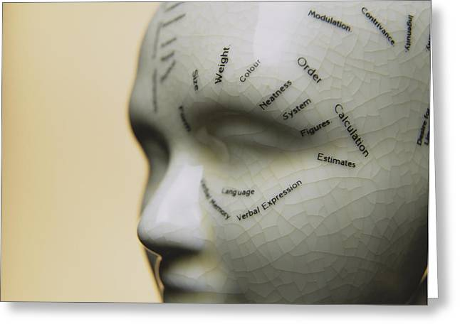 Alternative Skull Greeting Cards - Phrenology Head Greeting Card by Lawrence Lawry