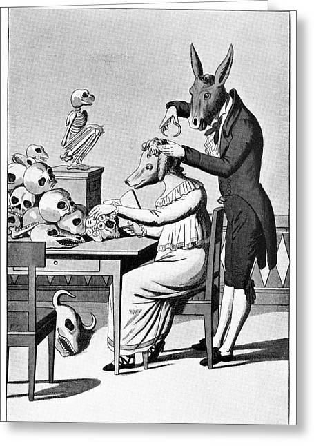 Die Karikatur Und Satire In Der Medizin Greeting Cards - Phrenology, Satirical Artwork Greeting Card by