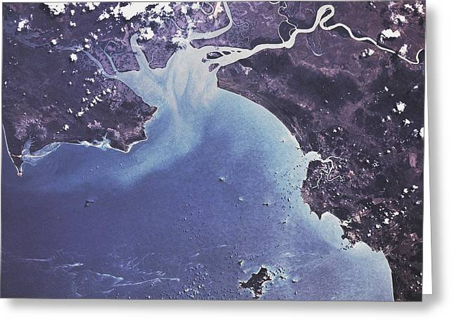 Phytoplankton Or Algal Bloom Greeting Card by NASA