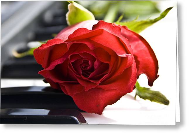 Piano Keys Greeting Cards - Piano Rose Greeting Card by Sophie De Roumanie