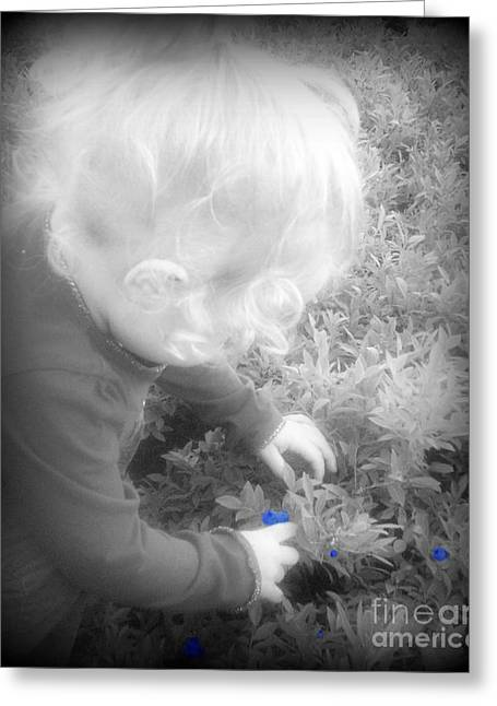 Toddlers Poster Greeting Cards - Picking Blueberries Greeting Card by Christy Beal