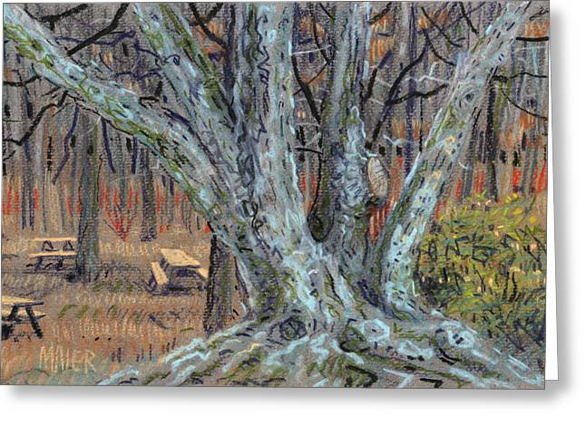 Picnic Pastels Greeting Cards - Picnic Area Greeting Card by Donald Maier