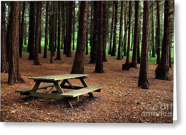 Autumn Scenes Greeting Cards - Picnic Table Greeting Card by Carlos Caetano