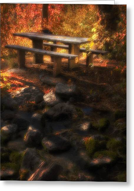Dappled Light Greeting Cards - Picnic Table Greeting Card by Utah Images
