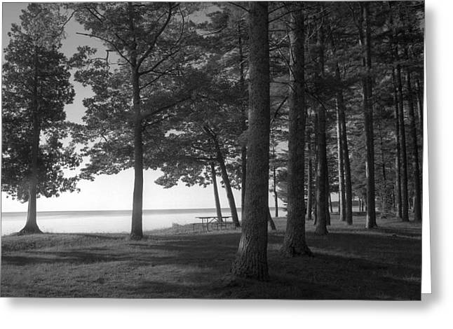 Stephen Mack Greeting Cards - Picnic Table View-Newport State Park Greeting Card by Stephen Mack