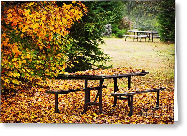 Algonquin Park Greeting Cards - Picnic table with autumn leaves Greeting Card by Elena Elisseeva