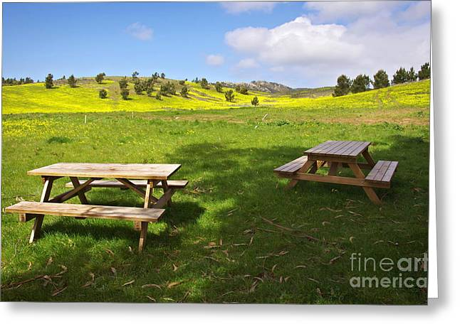 Woodland Scenes Greeting Cards - Picnic tables Greeting Card by Carlos Caetano