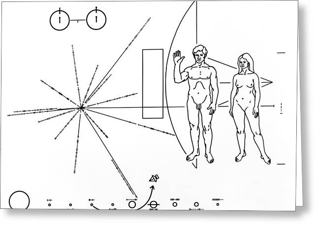 Male To Male Greeting Cards - Pictorial Plaque On Pioneer 10 And 11 Greeting Card by Nasa