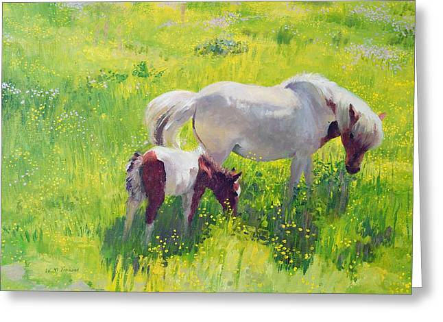 Grazing Greeting Cards - Piebald horse and foal Greeting Card by William Ireland
