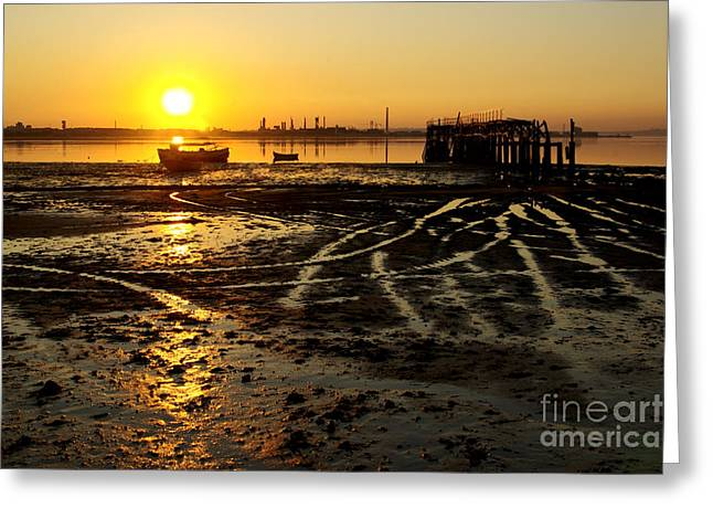 Sea Platform Greeting Cards - Pier at Sunset Greeting Card by Carlos Caetano