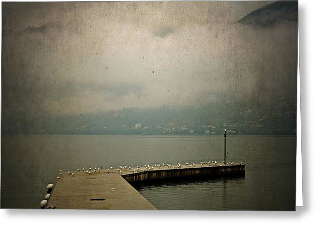 Tessin Greeting Cards - Pier With Seagulls Greeting Card by Joana Kruse