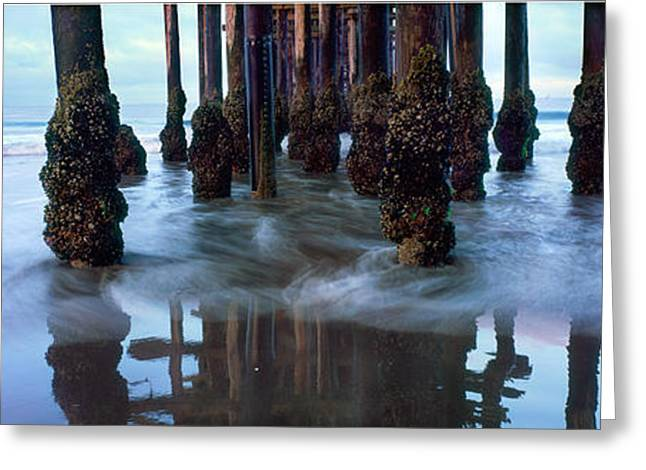 Pier Pilings Greeting Cards - Pier with Starfish Greeting Card by Steve Munch