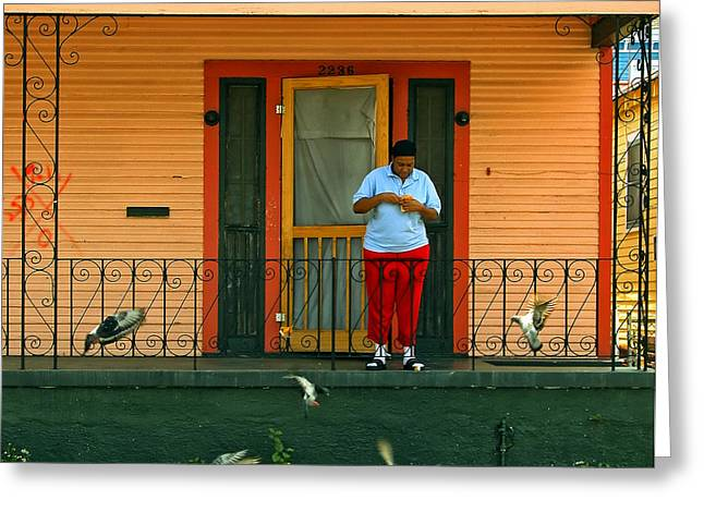Screen Doors Greeting Cards - Pigeon Lady of New Orleans Greeting Card by Kathleen K Parker