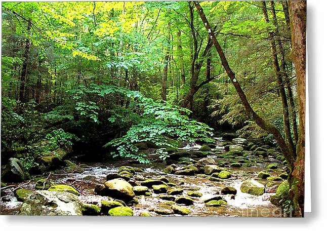 Gatlinburg Tennessee Greeting Cards - Pigeon River Greeting Card by Elizabeth Coats