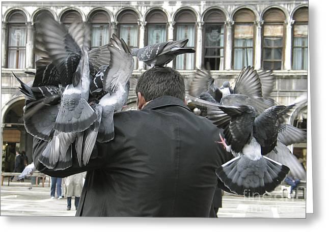 Pigeons Greeting Cards - Pigeons. Venice Greeting Card by Bernard Jaubert