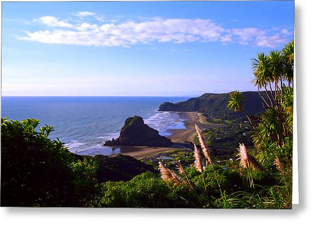 Pampas Grass Greeting Cards - Piha Panorama Greeting Card by Kevin Smith