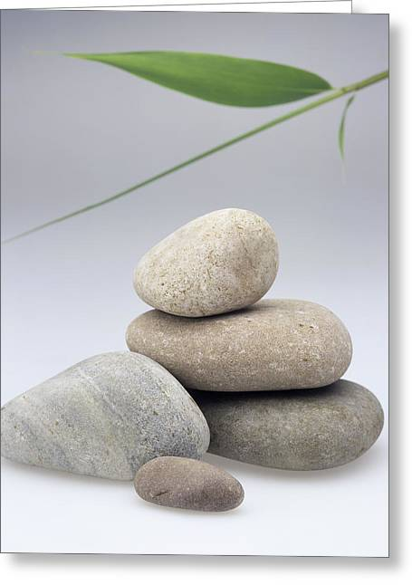 Treatment Greeting Cards - Pile Of Stones Greeting Card by Sheila Terry