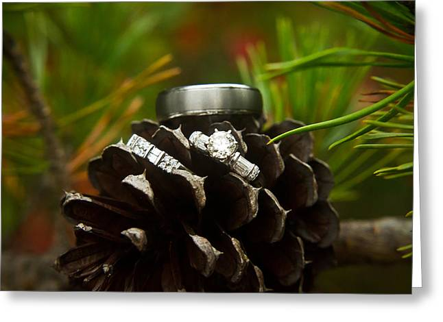 Pine Needles Greeting Cards - Pine Cone and Wedding Band Greeting Card by Douglas Barnett