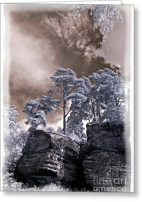 Infared Photography Greeting Cards - Pine Ridgeline - Infrared Photography Greeting Card by Steven Cragg