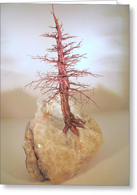 Western Western Art Pyrography Greeting Cards - Pine Tree on Crystal Greeting Card by Judy Byington