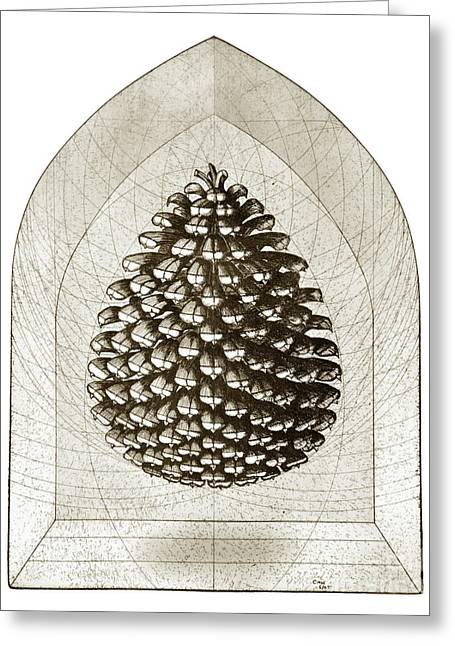 Surreal Geometric Greeting Cards - Pinecone Greeting Card by Charles Harden