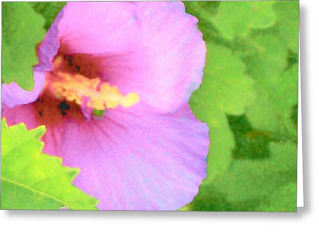 Althea Digital Art Greeting Cards - Pink Althea Greeting Card by Wide Awake Arts