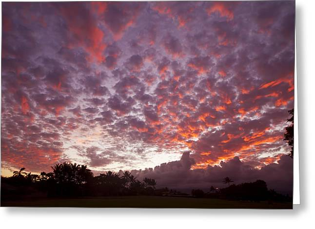 Amazing Sunset Greeting Cards - Pink Cloudy Sunset Greeting Card by Ron Dahlquist