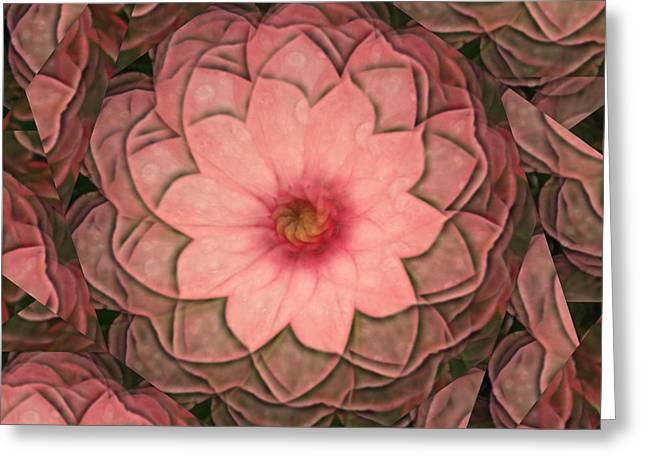 Rhonda Barrett Greeting Cards - Pink Delight Greeting Card by Rhonda Barrett