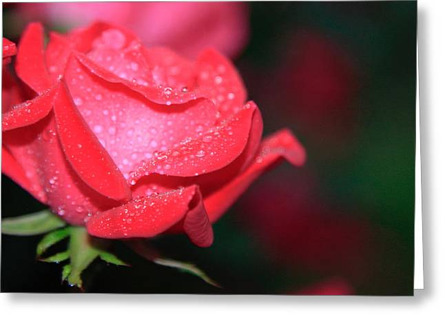 Pink Diamonds Greeting Card by Christopher McPhail