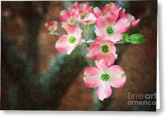 Delicate Mixed Media Greeting Cards - Pink Dogwood Cascade Greeting Card by Andee Design