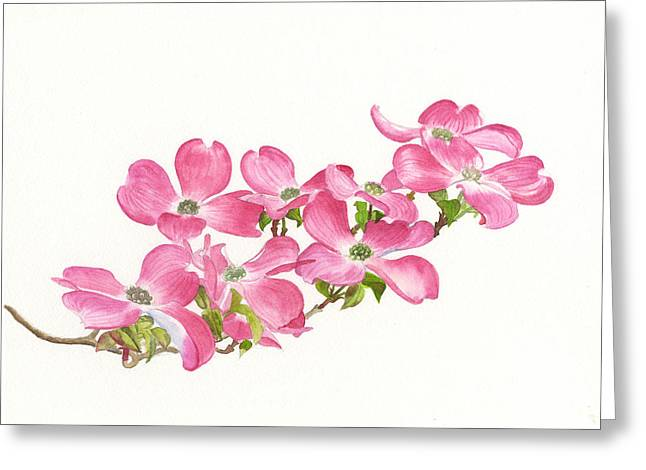 Dogwood Greeting Cards - Pink Dogwood Greeting Card by Sharon Freeman