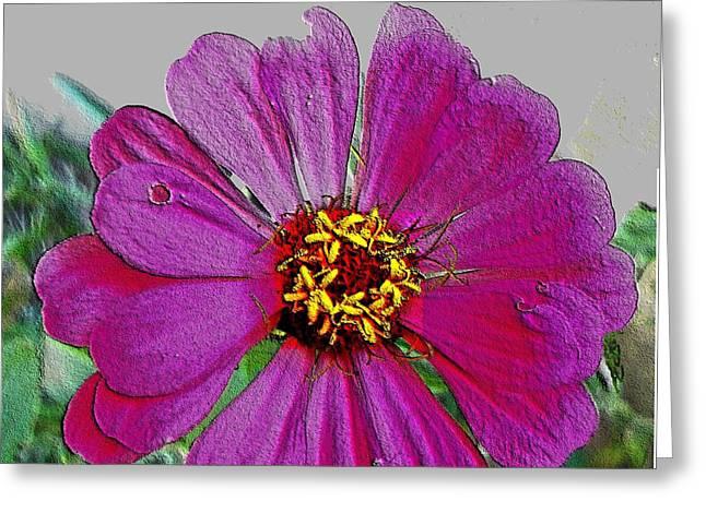 Pink Flower Greeting Card by Lisa  Ridgeway