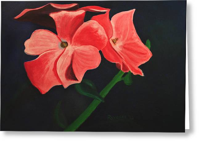 Midwest Greeting Cards - Pink Flowers Greeting Card by Roxanne Weber